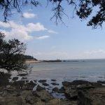 Organiser un séjour inoubliable à Saint-Palais-sur-Mer