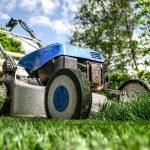 Entretien jardin : ce que vous devez savoir avant de choisir une tondeuse