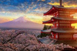 croisière japon