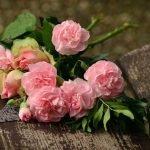 Fleuriste en ligne : créer son entreprise